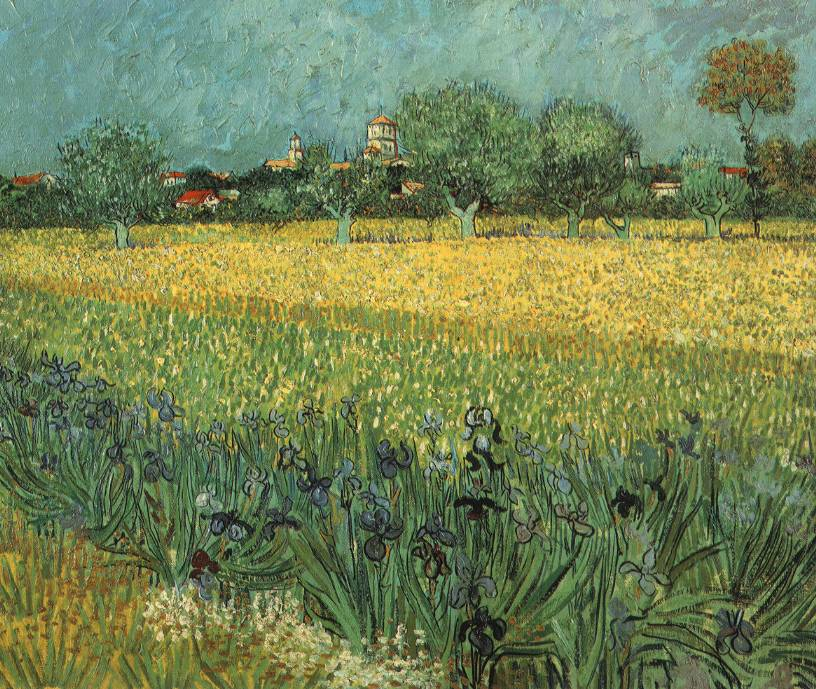 View of Arles with Irises - 1888 - Oil on canvas -54 x 65 cm. - Van Gogh Museum, Amsterdam
