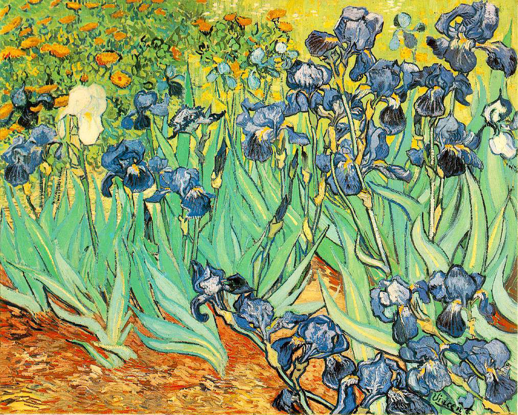 Irises - 1889 - Oil on canvas - 71 x 93 cm - Payson Gallery of Art, Portland, Maine or Getty Museum, California