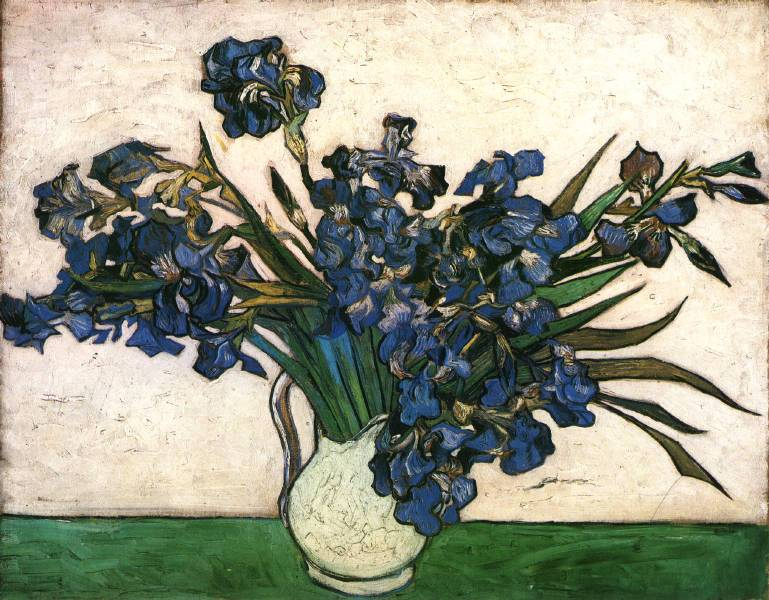 Irises - 1890 - Oil on canvas - 73.7 x 92.1 cm - The Metropolitan Museum of Art, New York