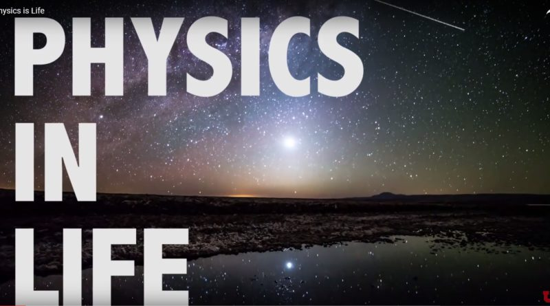 video-physics-in-life