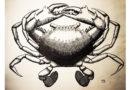 Dibujando un cangrejo con estilo de grabado antiguo